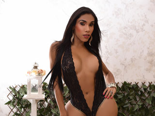 image of shemale cam model THEBODYHORNY